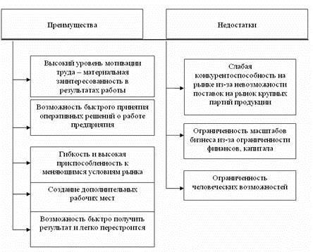 Особенности финансов предприятий малого бизнеса