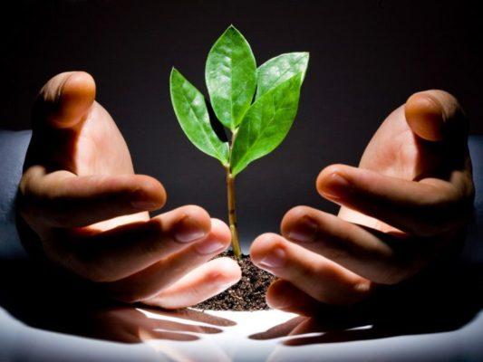 Венчурное финансирование инвестиционных проектов