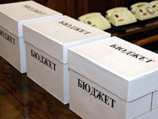 Бюджет - форма организации финансов некоммерческой организации