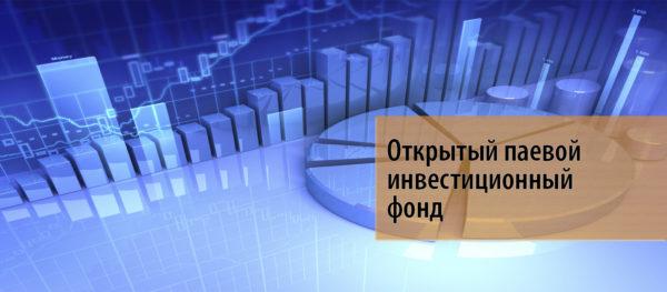 инвестиция в инвестиционный фонд